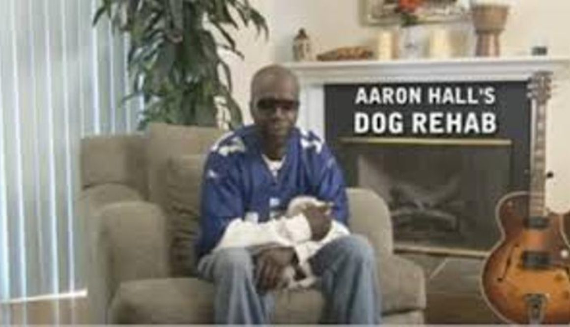 Aaron Hall's Dog Rehab